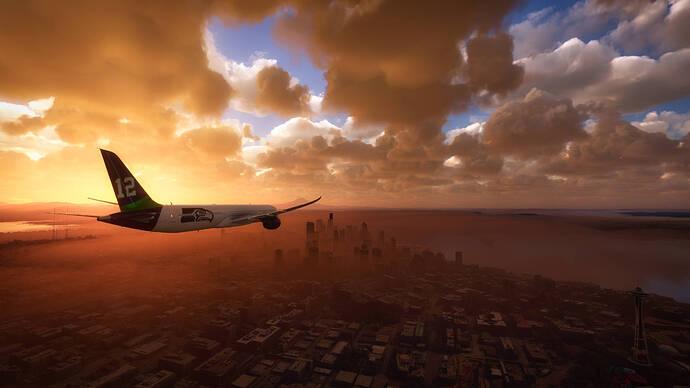 Microsoft Flight Simulator - 1.12.13.0 1_17_2021 10_42_31 PM