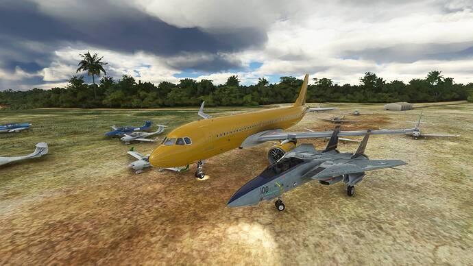 Microsoft Flight Simulator 9_26_2021 1_04_45 PM