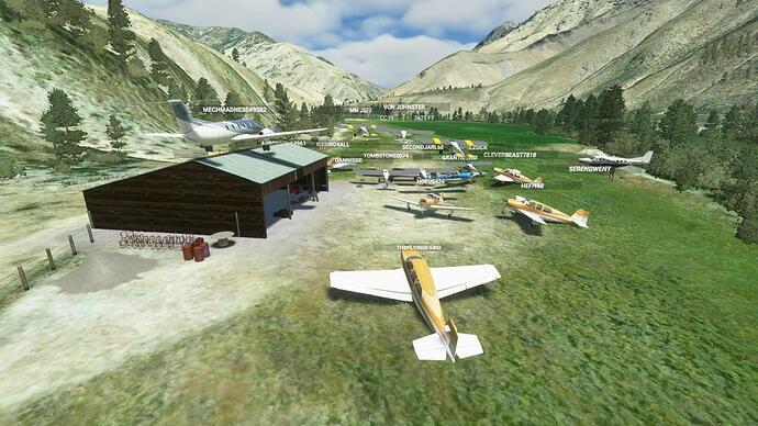 Microsoft Flight Simulator Screenshot 2021.06.04 - 21.45.10.98