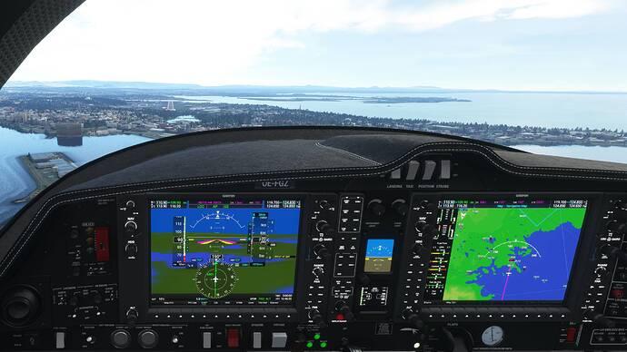 Microsoft Flight Simulator 8_9_2021 10_48_56 PM (2)