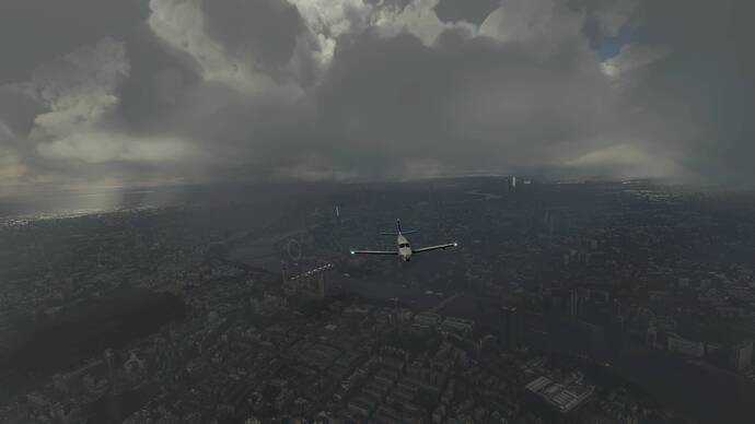 2021-08-01 (134)