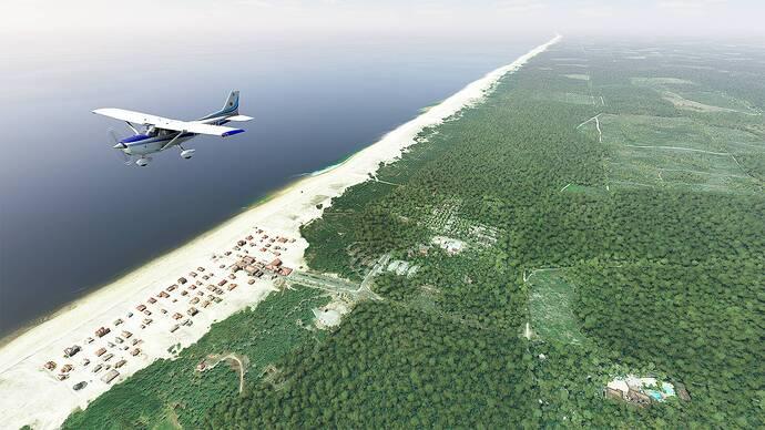 Microsoft Flight Simulator 2021-05-15 14_53_22