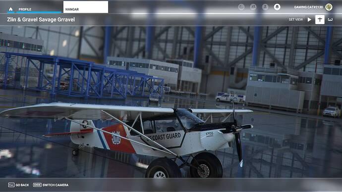 Microsoft Flight Simulator 29.07.2021 16_51_15