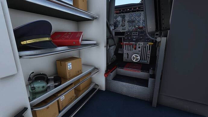 Microsoft Flight Simulator Screenshot 2021.06.28 - 19.47.30.59