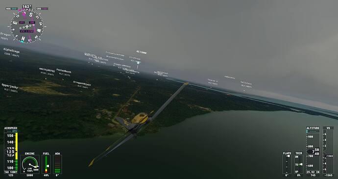 Microsoft Flight Simulator Screenshot 2021.08.01 - 22.17.48.47