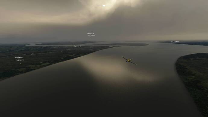 Microsoft Flight Simulator 8_1_2021 2_17_19 PM