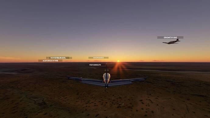 Microsoft Flight Simulator_2021.07.25-22.16