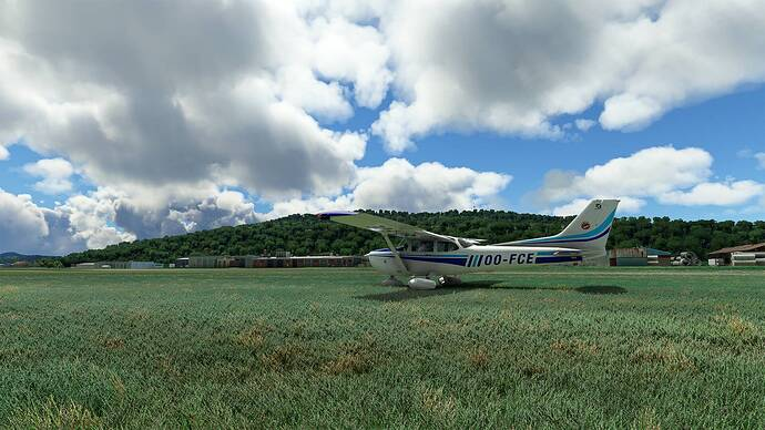 Microsoft Flight Simulator 2021-05-16 13_33_59