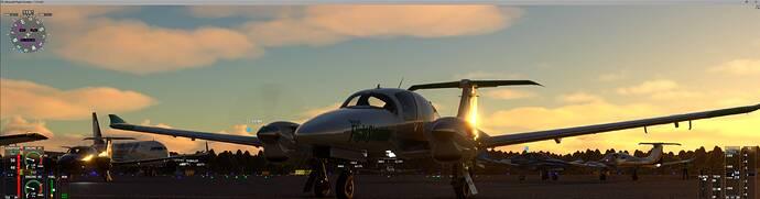 Microsoft Flight Simulator 7_31_2021 2_39_22 PM