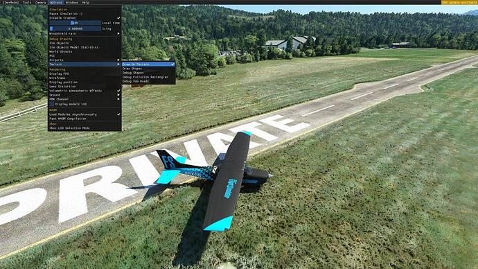 Microsoft Flight Simulator 10.08.2021 19_59_36