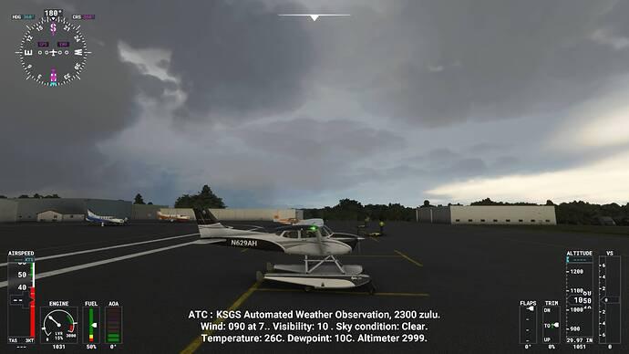 Microsoft Flight Simulator 7_28_2021 4_40_46 PM