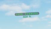 cppr-nameplates-v2-green_day